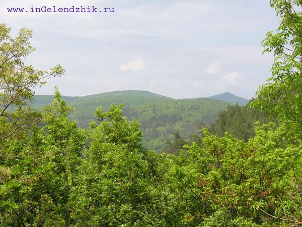 Геленджик 2008 май. Дача Короленко, горы